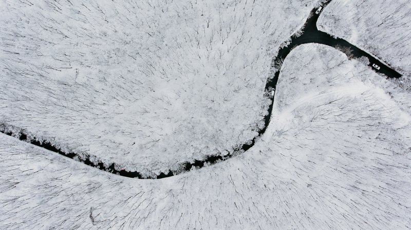 Владивосток, весна, март, снег, лес, деревья Весенняя сказкаphoto preview