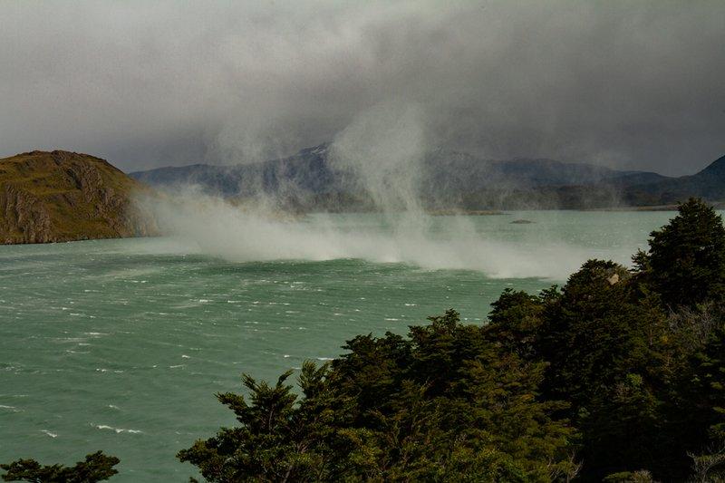 patagonia Водные кони.photo preview