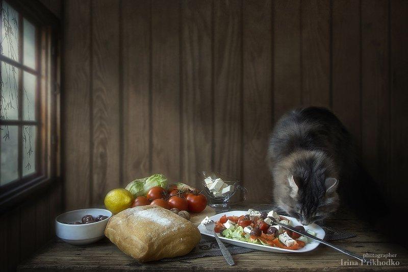 натюрморт, домашние животные, еда, салат с брынзой, кошка Масяня, овощи Вегетарианкаphoto preview