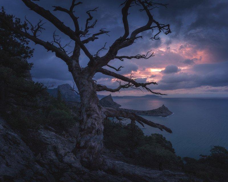 Каждый день разный и по-своему прекрасный рассвет в Новом свете. Караул-Оба и мыс Капчик.photo preview