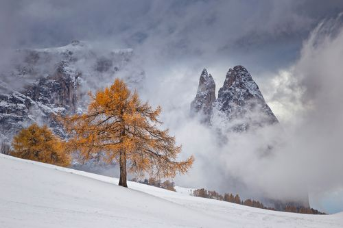 Between Seasons