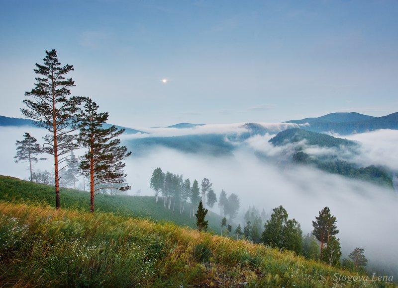 река мана, туман, утро, красноярск Туман над рекойphoto preview