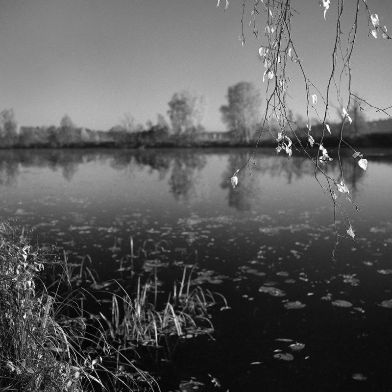 осень река \