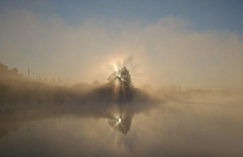 утро, рассвет, восход, туман, архангельское Берег восходящих звёздphoto preview