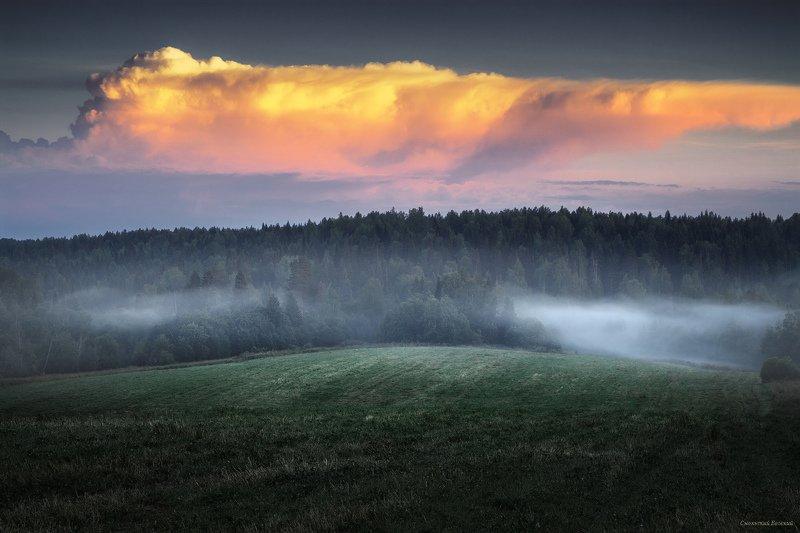 туман, вечер, поле, лето, закат, луг Клубился туманphoto preview