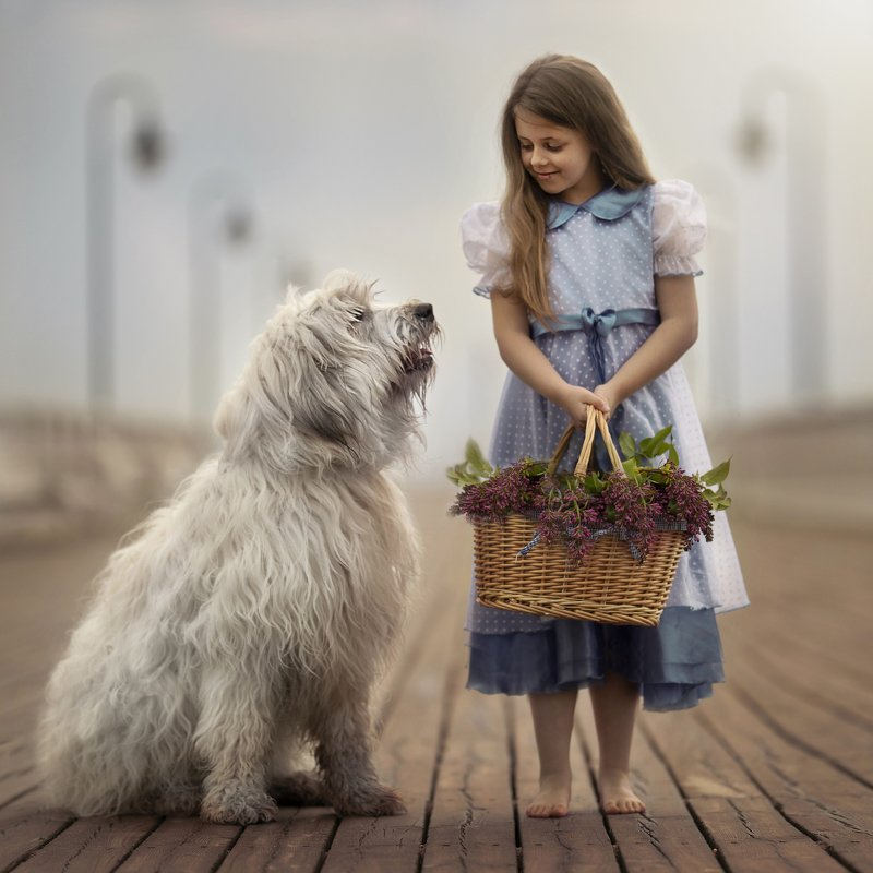 The dog and it\'s friend, the Childphoto preview