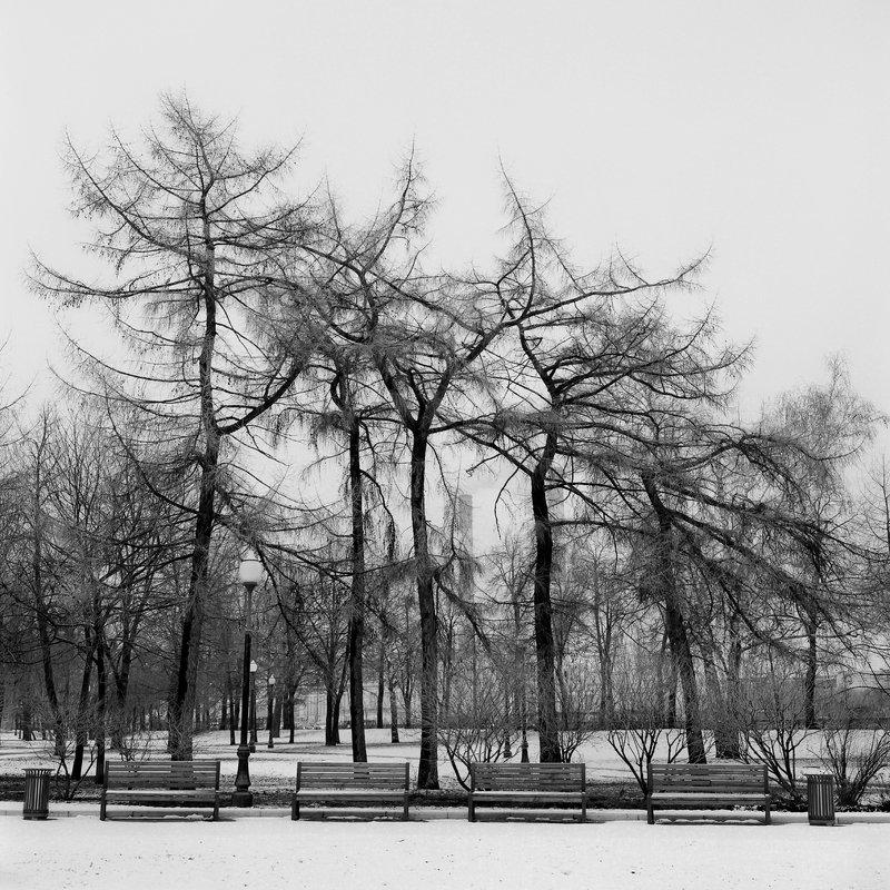 hasseldlad парк \