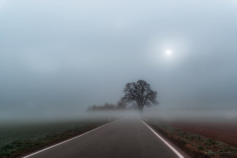 Foggy roadphoto preview