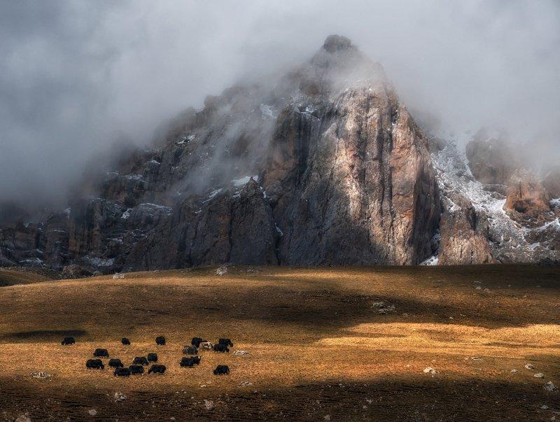 Национальный парк Алания.photo preview
