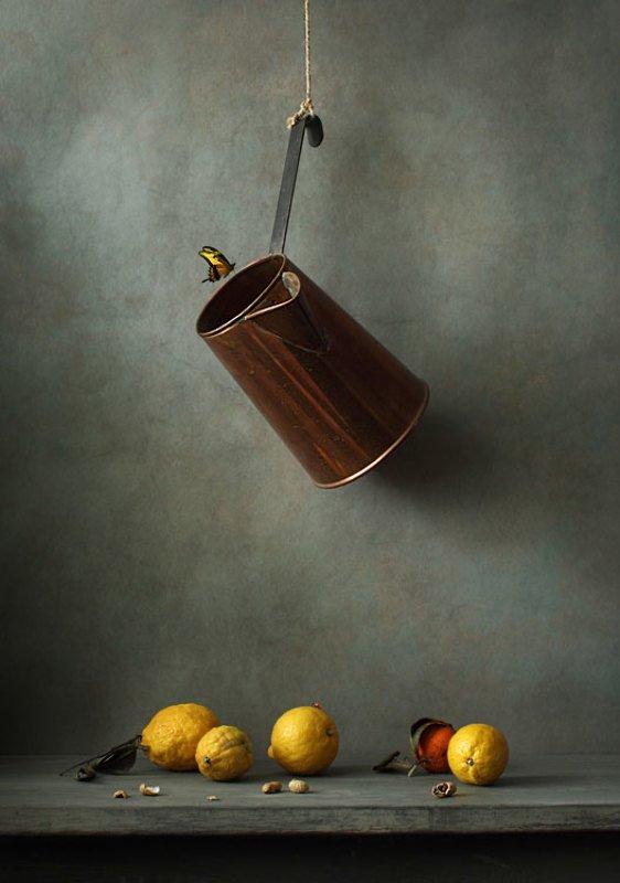 Кувшин, лимоны и бабочкаphoto preview