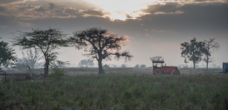 индия, пейзаж Индийский пейзажphoto preview