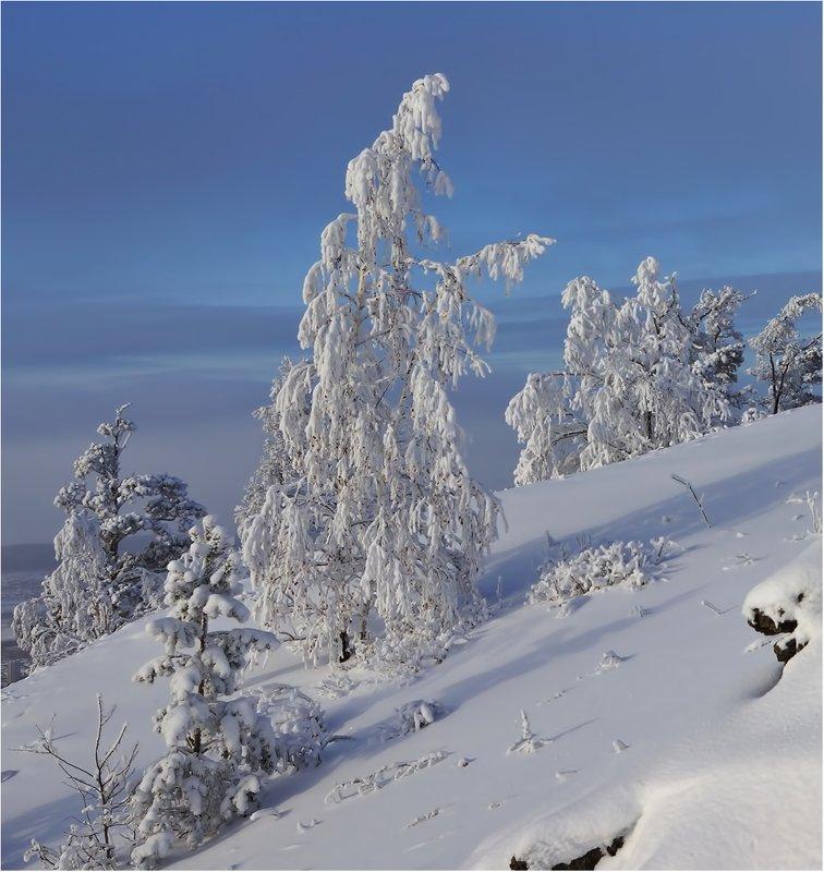 Зимы прощание...photo preview