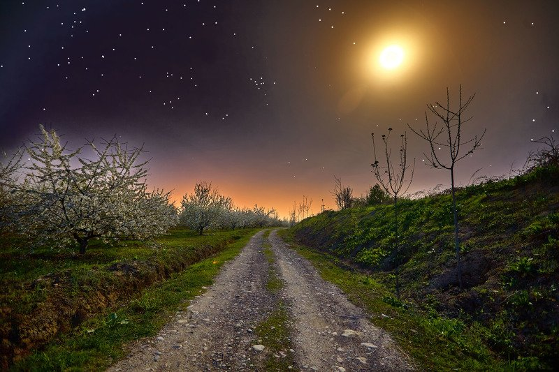 Гиссарская ночь… Таджикистанphoto preview