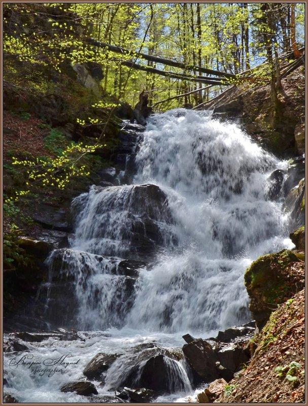 карпаты, боржава, весна, водопад шипот, листочки Водопад Шипотphoto preview