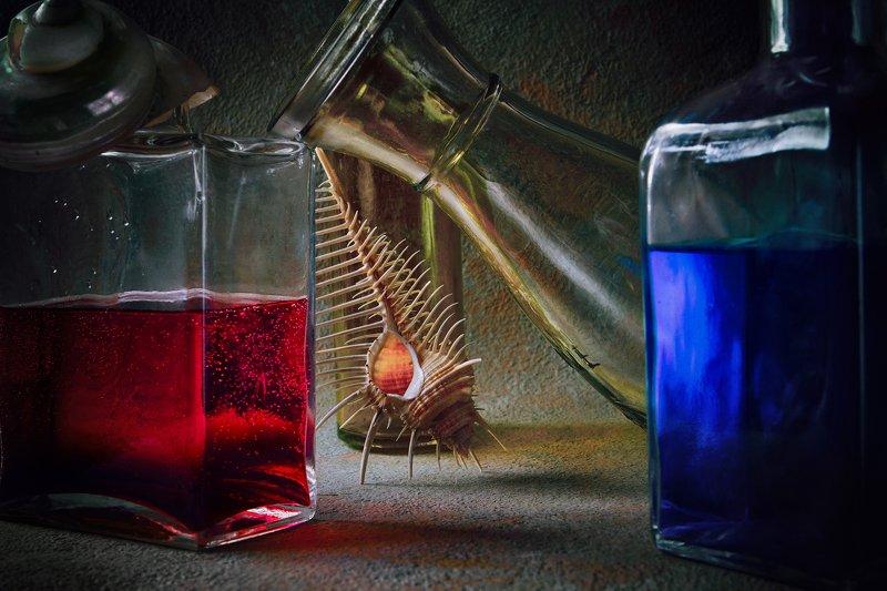 бутылки, стекло, ракушка, морская раковина, вода С гребнем Венерыphoto preview