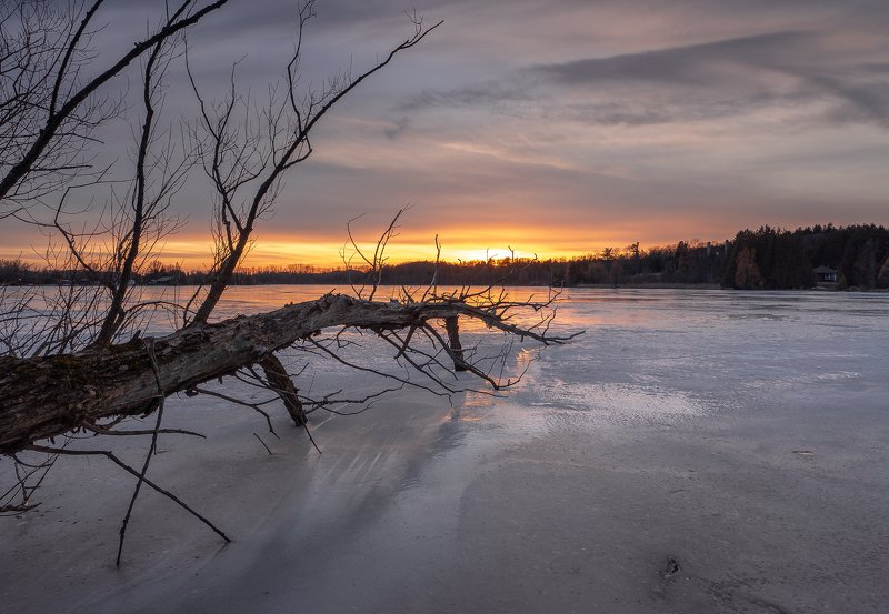 lake, ice, tree, sky, clouds, sunset, cold, spring, march, озеро, лёд, дерево, небо, облака, закат, мороз, весна, март Marchphoto preview
