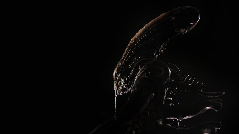Alienphoto preview