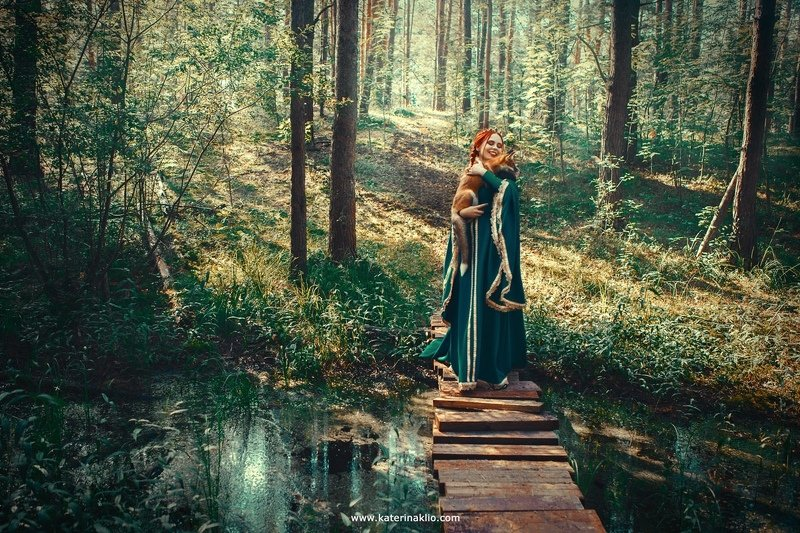 fox, queen, fairy, forest Forest foxesphoto preview