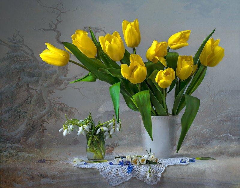 весенний натюрморт с жёлтыми тюльпанами,художественное фото,искусство,цветы. Холодная,но всё таки весна.photo preview