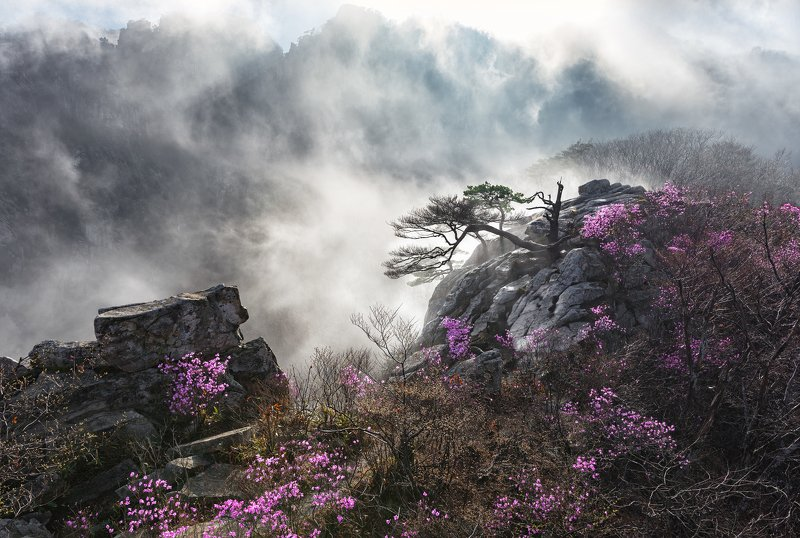 mountains,rocks,clouds,mountain,range,peak,hiking,fog,rugged,foggy,spring Pandoraphoto preview