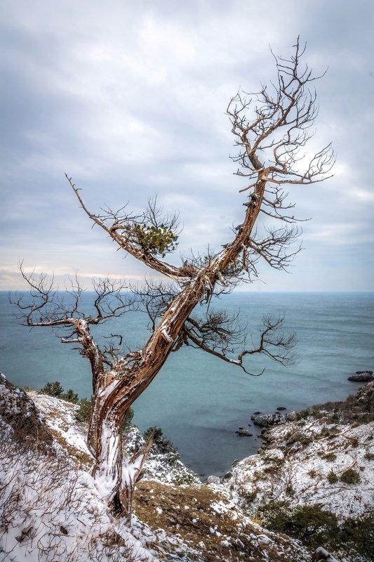 Крымский минимализмphoto preview