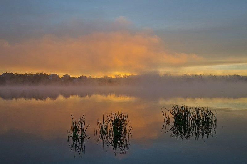 утро, рассвет, туман, пейзаж, архангельское Горячий рассветphoto preview