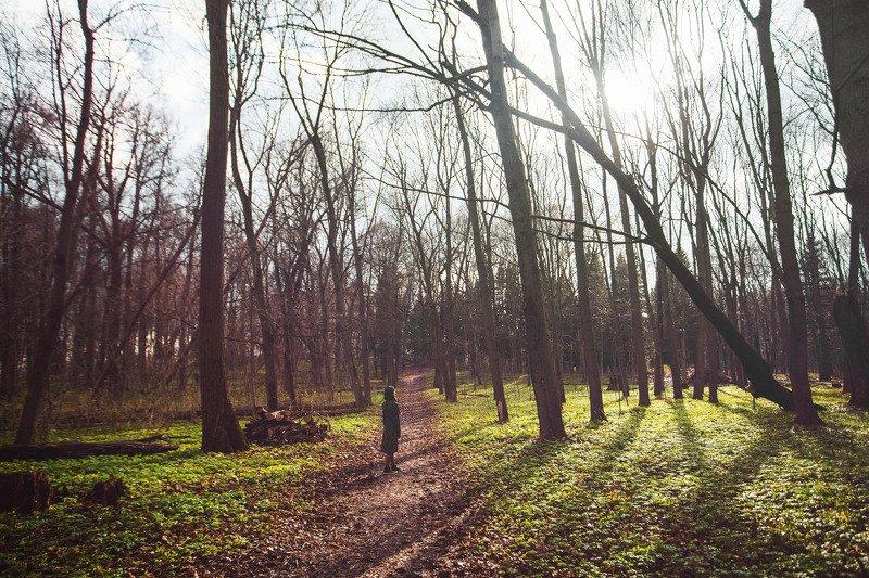 девочка,природа,солнце Тишьphoto preview