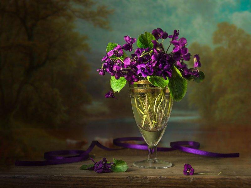 натюрморт с фиалками,весенние цветы,букет,художественное фото,искусство. Милых фиалок букетикphoto preview