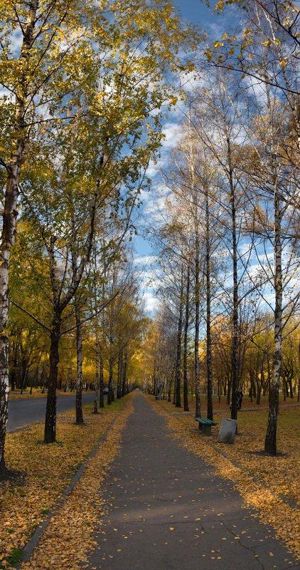 панорама, осень, пейзаж, листва, аллеи, город Осенняя аллеяphoto preview