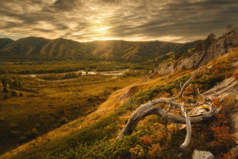 россия, алтай, алтайский край, тигирек, сибирь, осень, природа, пейзаж, горы, хребет, лесостепь, закат,  заповедник Тигирекphoto preview