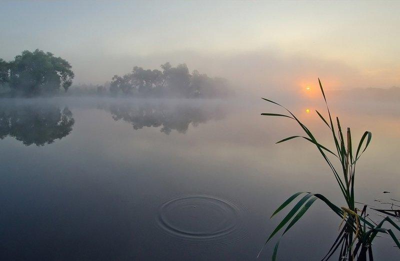 утро, рассвет, пейзаж, большие байдики Дотянуться до Солнцаphoto preview