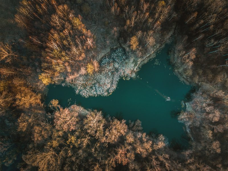 landscape,, dji mavic pro, trees, pond, lake  фото превью