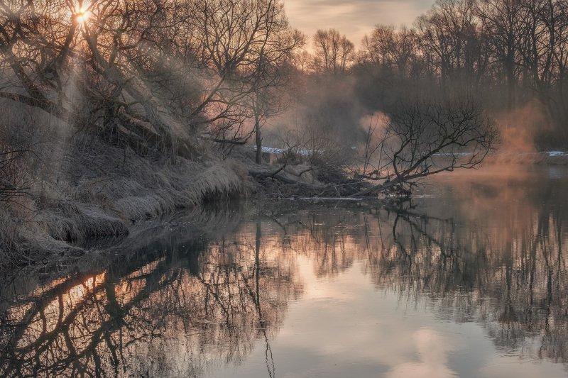 истра, река, вода, отражения, март, тепло, рассвет, солнце, деревья, ветки, туман Потеплелоphoto preview