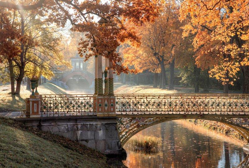 Утро в пушкинском паркеphoto preview