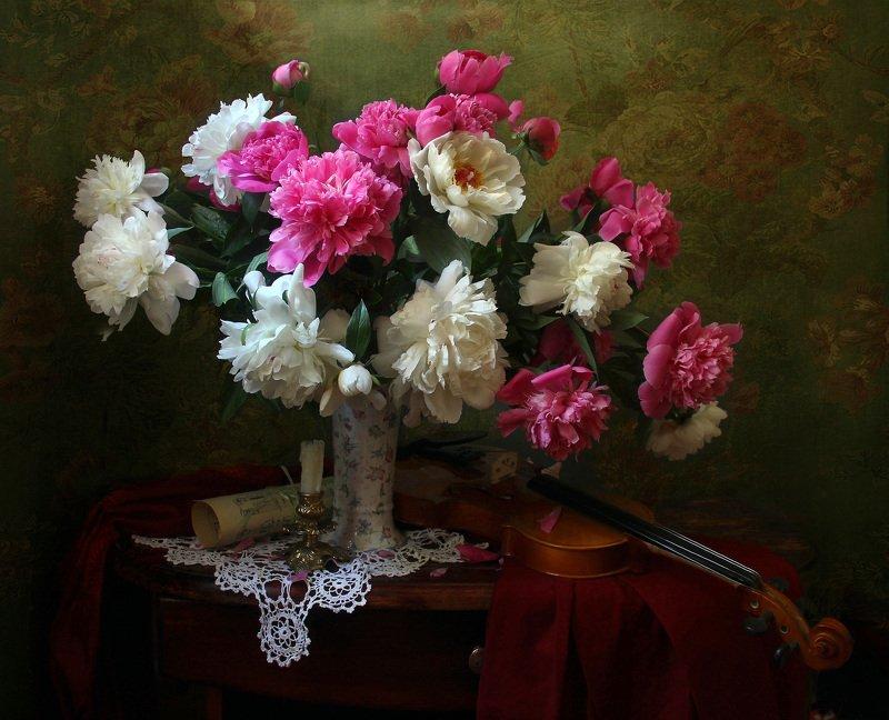 натюрморт, букет цветов, пионы, скрипка, марина филатова Натюрморт с пионами и скрипкойphoto preview