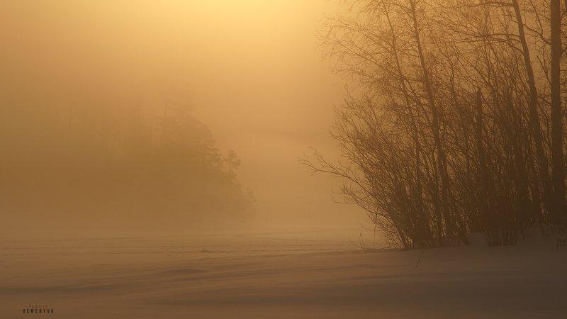 ладога, зима, туман, рассвет, острова, деревья, минимализм, снег, ladoga, lake, winter, fog, ice, snow, sunrise, minimalism. Призраки зимней Ладоги.photo preview
