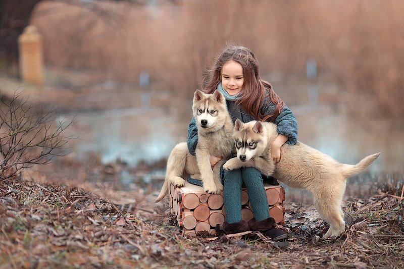 фотограф, фотографирую, фотопрогулка, девочка, малышка, весна, собаки, хаски, ребенок, семейная фотосессия, детский фотограф, счастье, радость, дети на фото, семейная фотография, девочка и собака, любовь, восторг Друзьяphoto preview