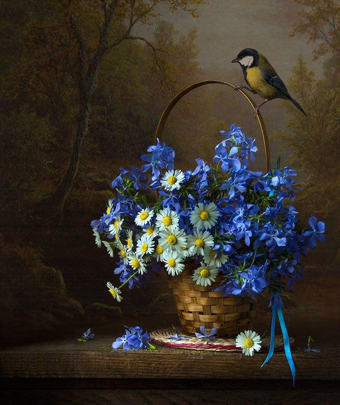 натюрморт с весенними флоксами и маргаритками,с синицей,цветы,букет,весна,художественное фото,искусство. Синичка с весенними флоксами.photo preview