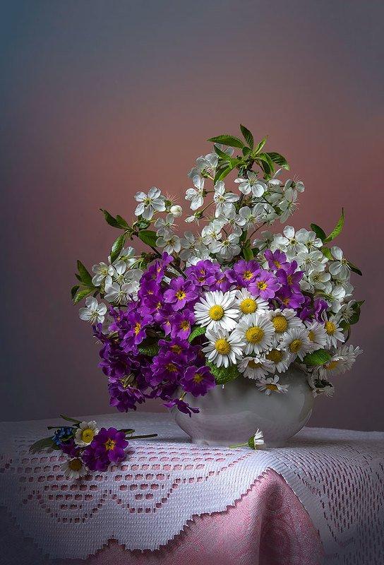 натюрморт с примулами,весенний букет,цветы,художественное фото,искусство. photo preview