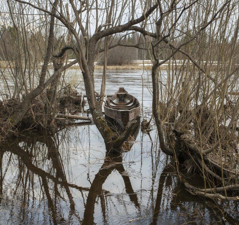 Весенний разлив.photo preview