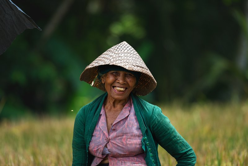 Сборщицы риса. Остров Бали, Индонезия.photo preview