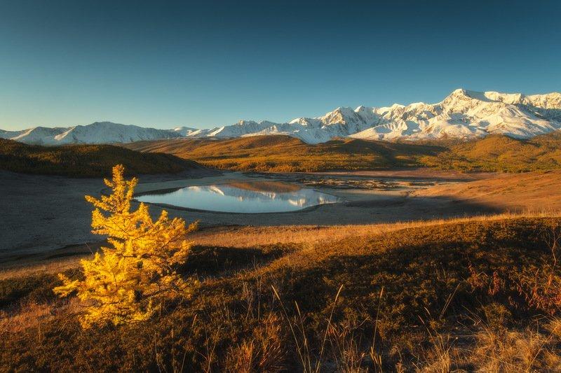 россия, алтай, республика алтай, горный алтай, природа, пейзаж, сибирь, горы, озеро, рассвет, осень, джангысколь Осенний Алтайphoto preview