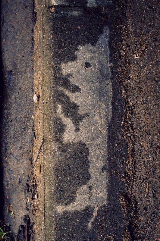 pareidolia ***photo preview