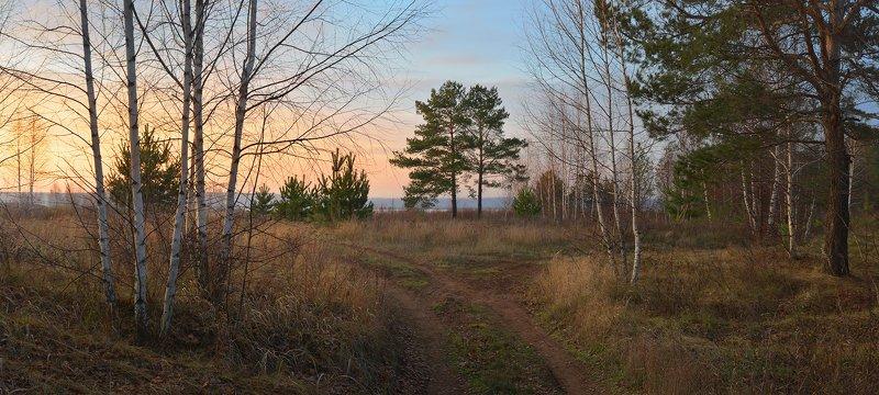 закат, небо, холодно, вечерний свет, дорога, деревья, трава По дороге к озеруphoto preview