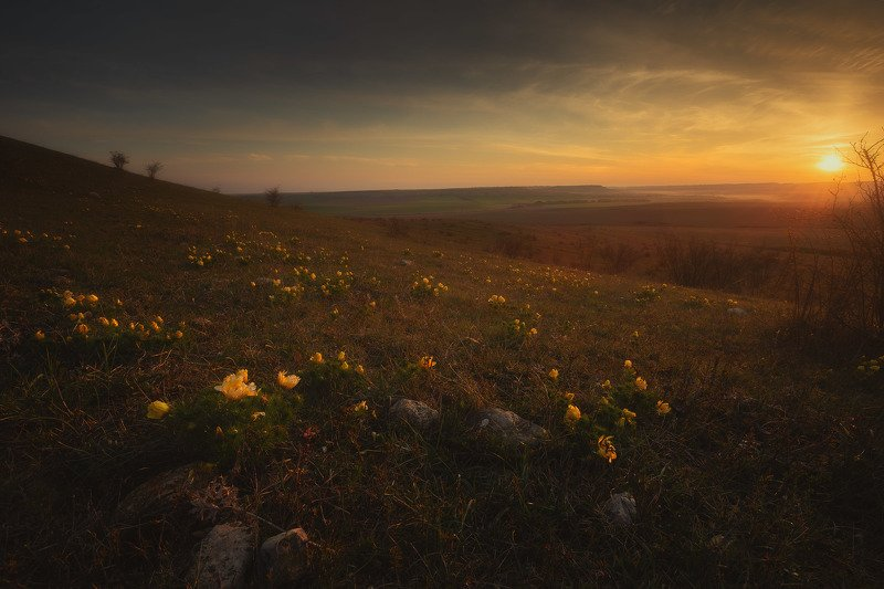 Тёплое весеннее утро в Крыму.photo preview