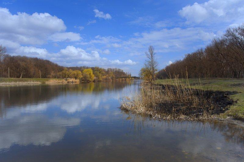 весна,утро,берег,река,гидропарк Гидропарк ...photo preview