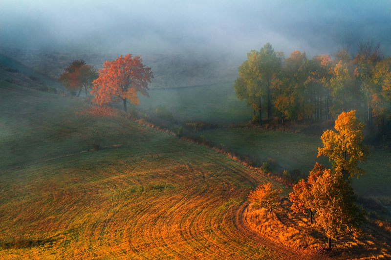 landscape,canon,mist,light,autumn New Day Reborn! фото превью