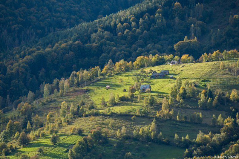По соседству с лесомphoto preview