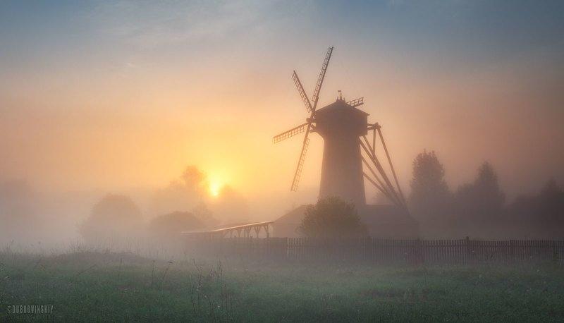 истра, мельница, рассвет, туман, май, весна Майское утро фото превью