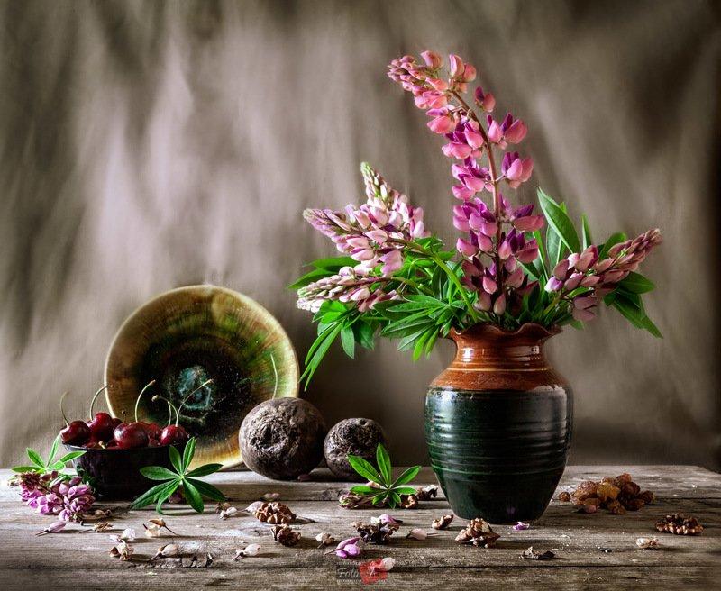 люпин, вишня, свекла, орех, листья photo preview